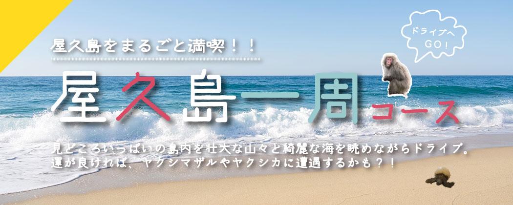 屋久島をまるごと満喫!!屋久島一周コース